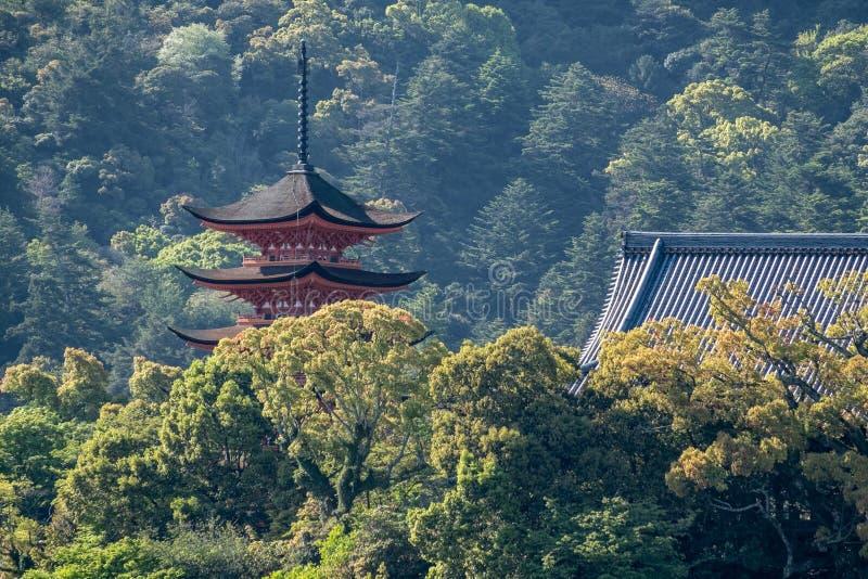 La grande nature de la colline avec le tombeau rouge symbolique japonais photographie stock libre de droits