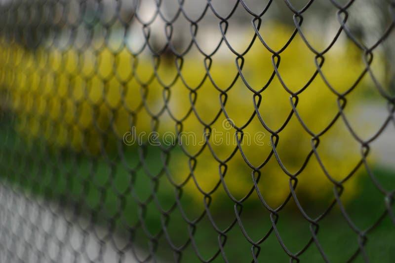 La griglia il collegamento a catena con una copertura della pittura immagine stock