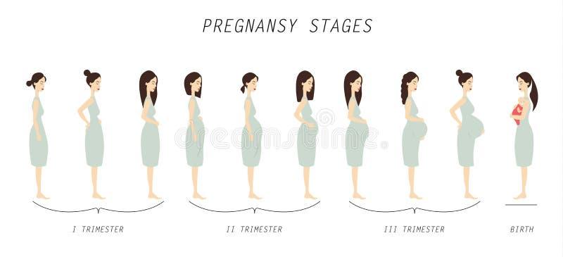 La grossesse présente l'illustration illustration libre de droits