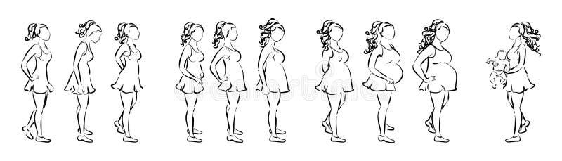La grossesse présente le concept illustration de vecteur