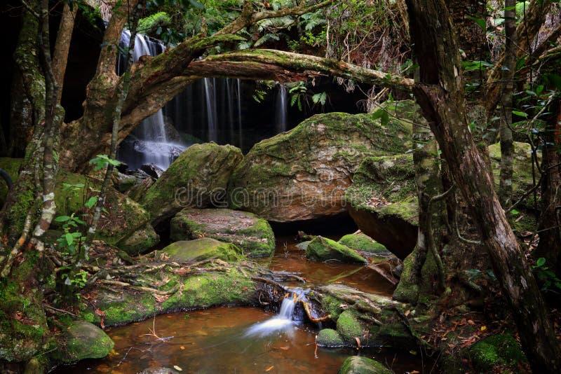 La gruta enorme en Fitzory cae Australia fotos de archivo libres de regalías