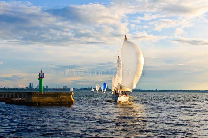 La guida, un yacht bianco fotografia stock libera da diritti