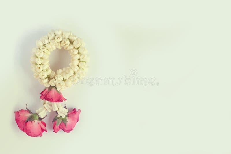 La guirlande blanche de jasmin et de rose de rouge dans la couleur de vintage avec la copie espacent le fond clair images libres de droits