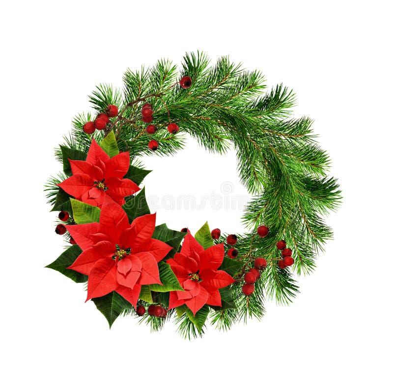 La guirlande de Noël des brindilles, des baies et de la poinsettia de pin fleurit image libre de droits