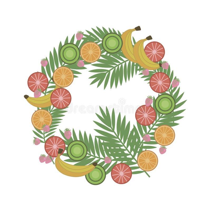 La guirlande des fruits tropicaux et des baies avec la paume s'embranche sur un wh illustration stock