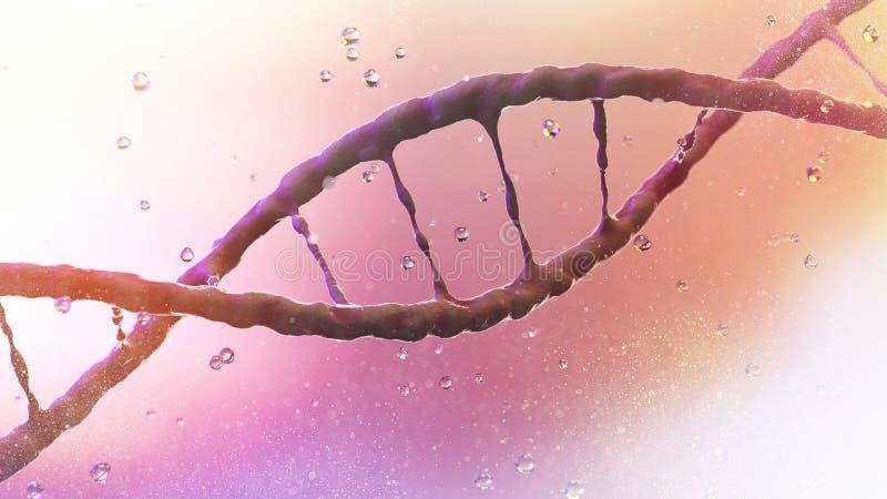 La hélice de la DNA, ácido desoxirribonucléico es a hilo-como la cadena de los nucleótidos que llevan las instrucciones genéticas stock de ilustración