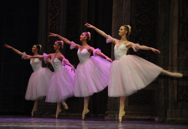 La hada del copo de nieve - el cascanueces del ballet imagen de archivo libre de regalías