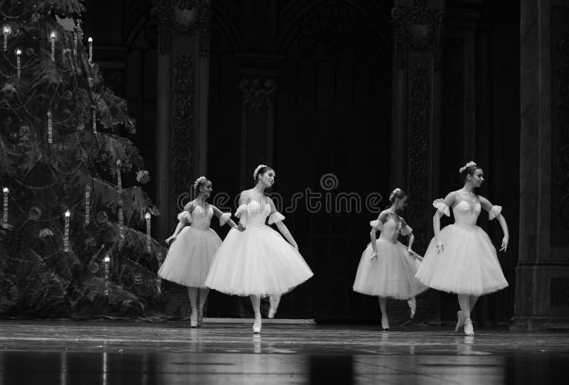 La hada del copo de nieve - el cascanueces del ballet imagen de archivo