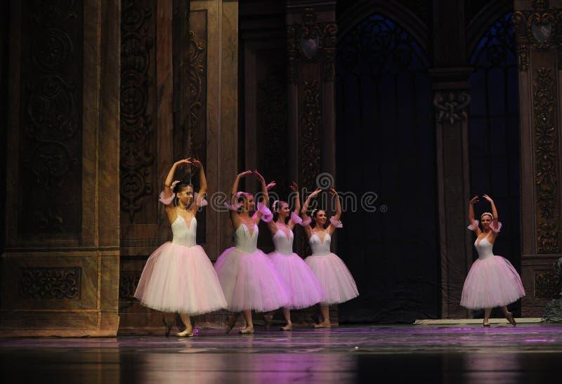La hada del copo de nieve el segundo reino del caramelo del campo del acto segundo - el cascanueces del ballet imagen de archivo libre de regalías