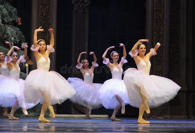 La hada del copo de nieve el segundo reino del caramelo del campo del acto segundo - el cascanueces del ballet imagenes de archivo