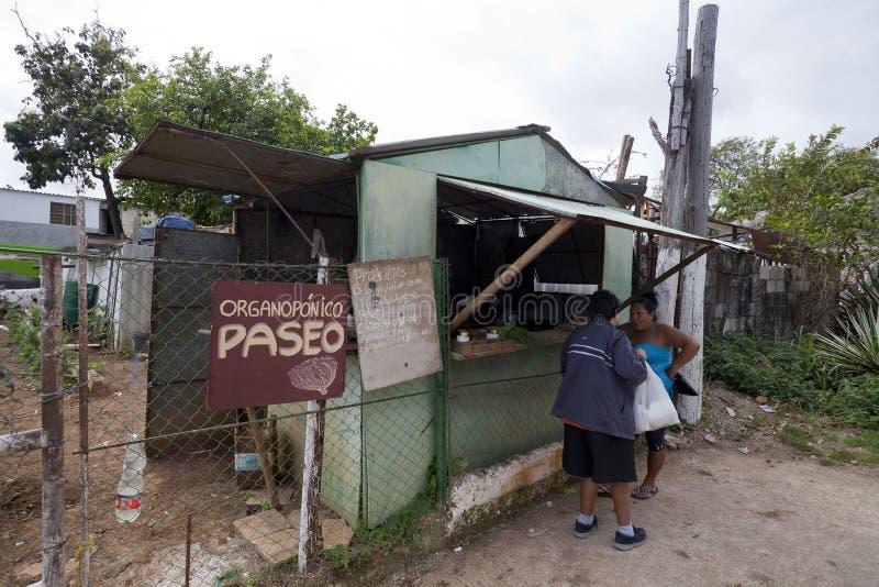 La Havane, Cuba - pénurie alimentaire photos libres de droits