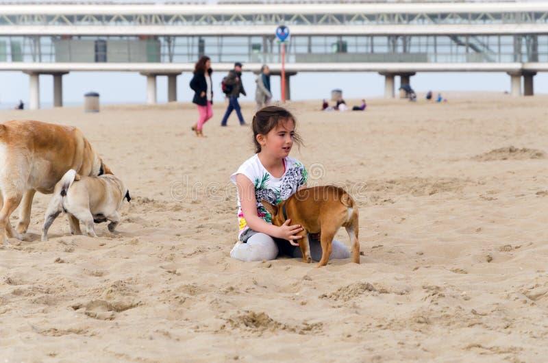 La Haya, Países Bajos - 8 de mayo de 2015: Niños que juegan en la playa, Scheveningen fotos de archivo libres de regalías