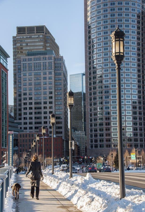 La hembra camina perro en invierno en Boston imagen de archivo libre de regalías