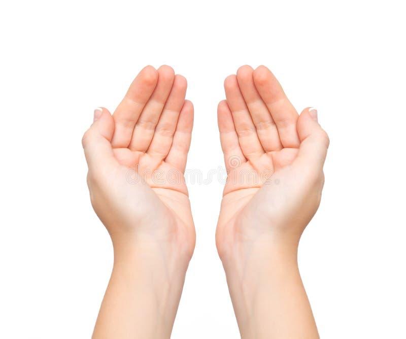 La hembra da el tema llevado a cabo las palmas imagen de archivo