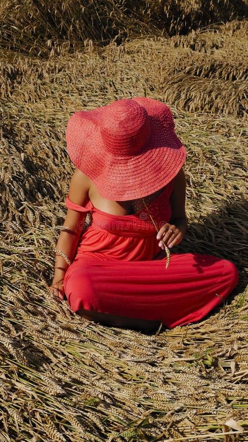 La hembra joven en el vestido rojo y en un sombrero se sienta en el campo fotos de archivo libres de regalías