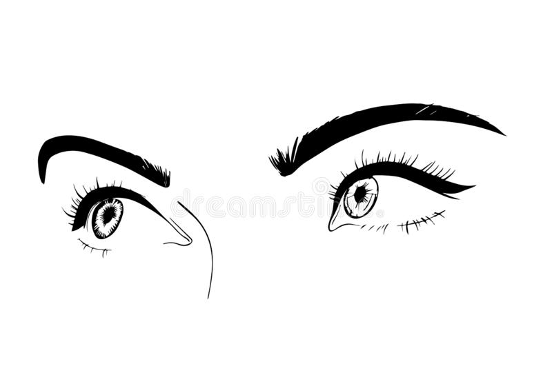 La hembra observa el primer, dibujo, bosquejo Una mirada coqueta Vecto libre illustration