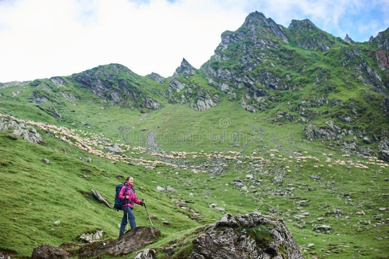 La hembra turística joven se está colocando en la montaña del pie en roca imagen de archivo libre de regalías
