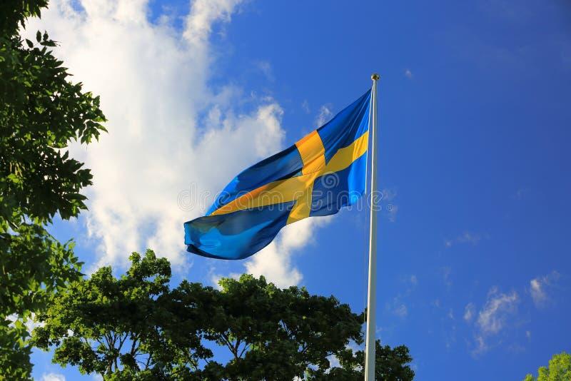 La hermosa vista de la bandera sueca en árboles verdes y del cielo azul con blanco se nubla el fondo fotos de archivo