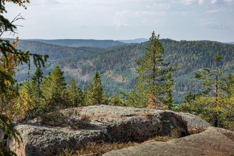 La hermosa vista de un acantilado, las montañas y el bosque ajardinan imagen de archivo