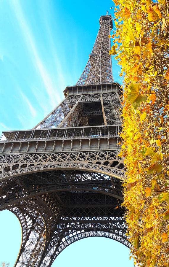 La hermosa vista del otoño amarillo hojea con la torre Eiffel en el fondo en París foto de archivo