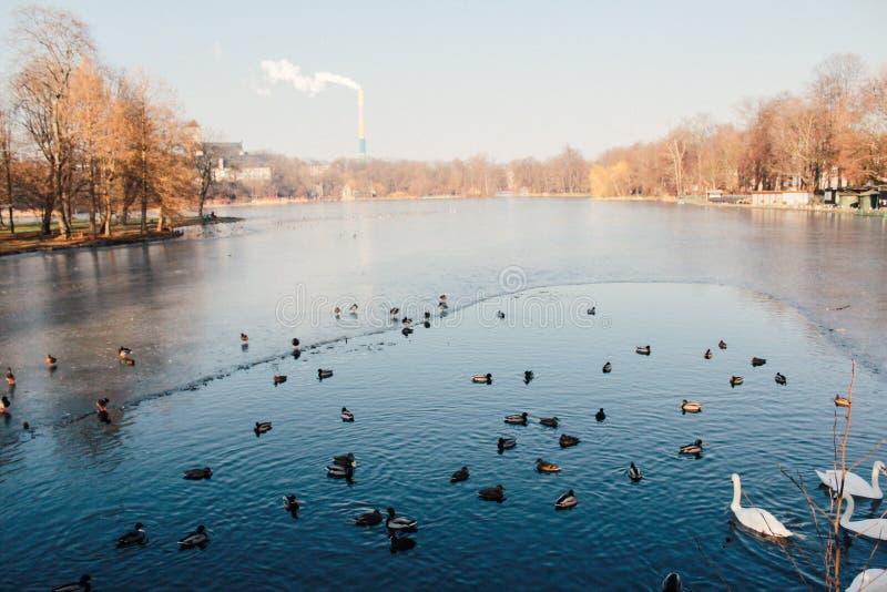 La hermosa vista en Praga alemania fotos de archivo libres de regalías