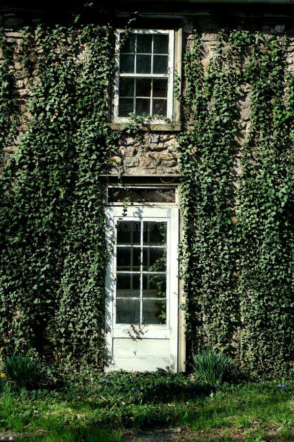 La hiedra cubrió la puerta y la ventana fotos de archivo libres de regalías