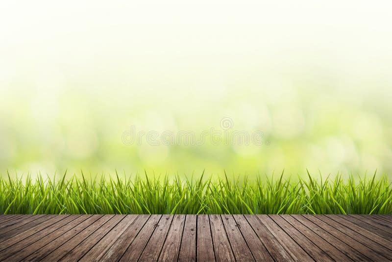 La hierba con verde empañó el fondo y el piso de madera foto de archivo libre de regalías