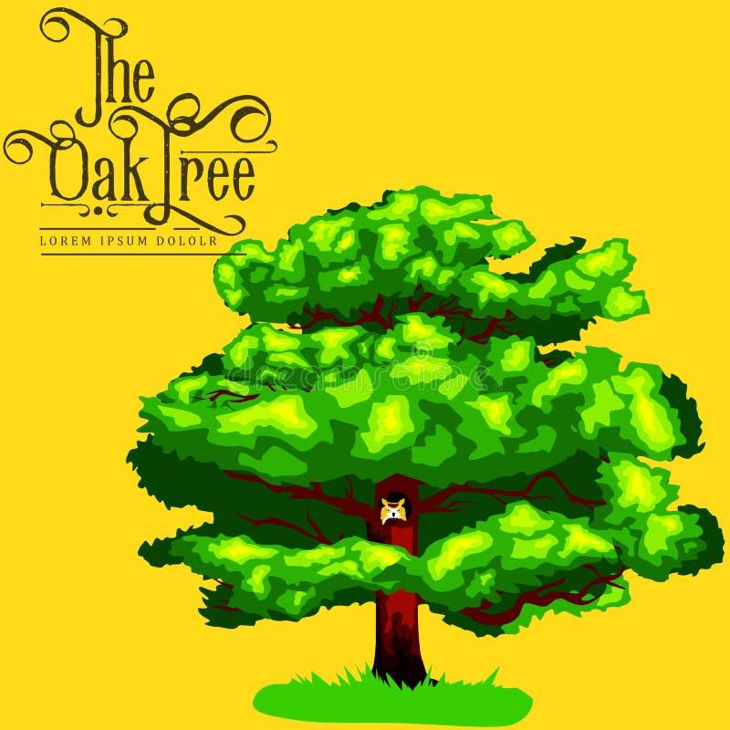 La historieta aisló el árbol del verano del roble en el icono del fondo, parque al aire libre con la rama, hojas en el ejemplo de stock de ilustración