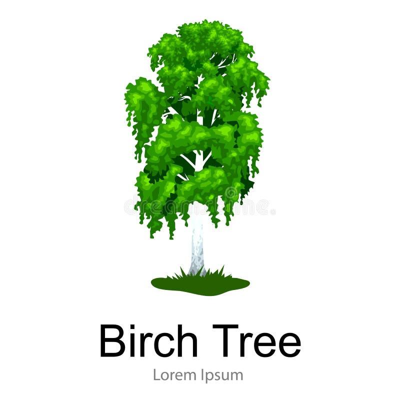 La historieta aisló el árbol en un icono blanco del fondo, parque al aire libre del verano del abedul con la rama, hojas en vecto libre illustration