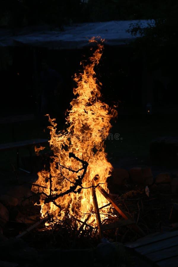 La hoguera en una noche de verano fotografía de archivo libre de regalías