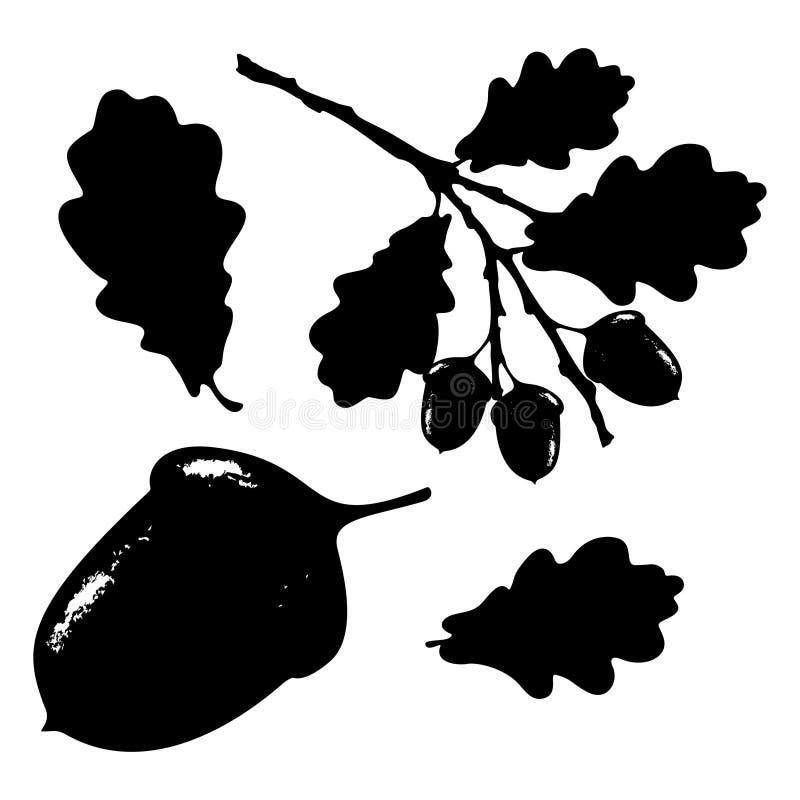 La hoja, la bellota y la rama del roble aislaron la silueta, ecología estilizada stock de ilustración