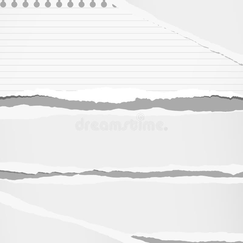 La hoja blanca y gobernada rasgada del papel del cuaderno se pega en fondo gris libre illustration
