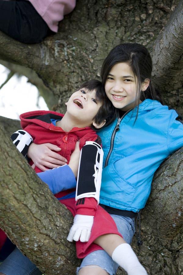 La holding della sorella ha reso non valido il fratello in albero fotografia stock