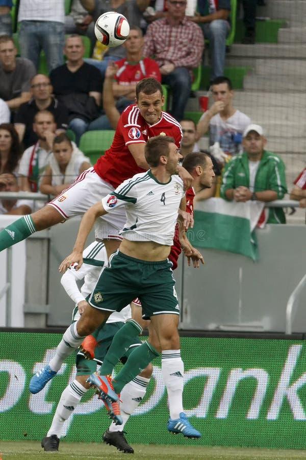 La Hongrie contre les Hollandes Le football 2016 de qualificateur d'euro de l'UEFA de l'Irlande du Nord m photo stock