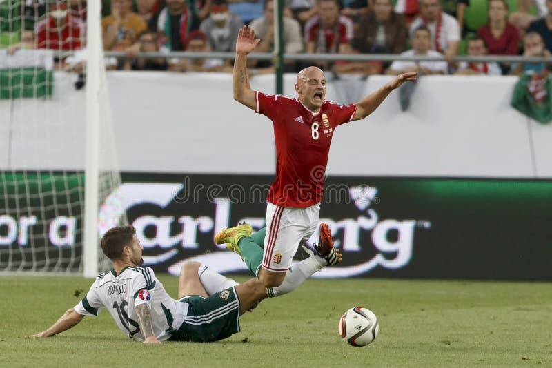 La Hongrie contre les Hollandes Le football 2016 de qualificateur d'euro de l'UEFA de l'Irlande du Nord m images stock