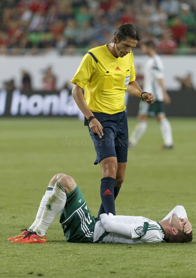 La Hongrie contre les Hollandes Le football 2016 de qualificateur d'euro de l'UEFA de l'Irlande du Nord m image libre de droits