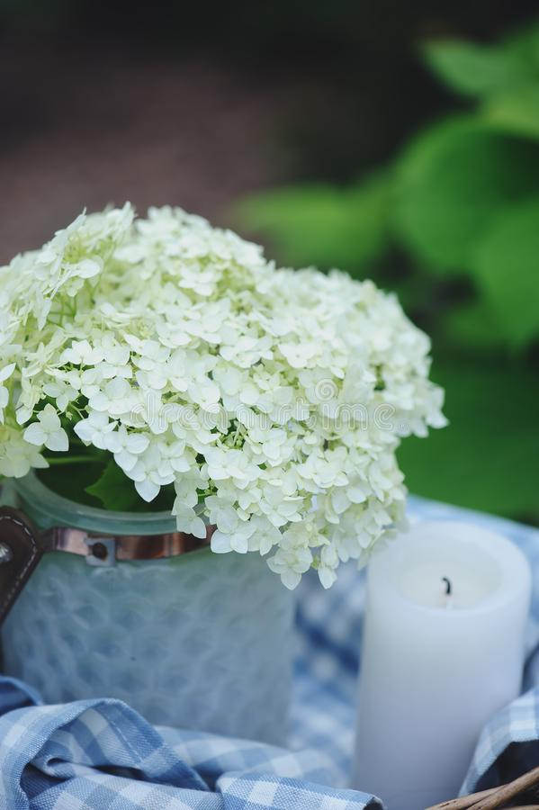 la hortensia florece en tarro del vintage con la vela y el mantel azul en jardín del verano foto de archivo libre de regalías