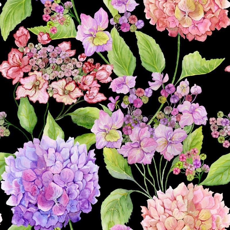 La hortensia hermosa florece con las hojas verdes contra fondo negro Modelo floral inconsútil Pintura de la acuarela stock de ilustración