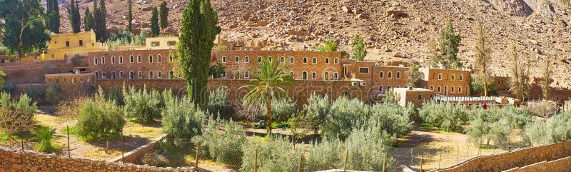 La huerta verde oliva de St Catherine Monastery, Sinaí, Egipto fotos de archivo