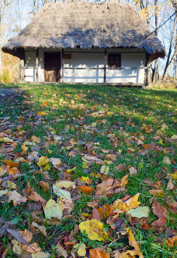 La hutte de pays et le jardin en bois d'automne engazonnent près photos libres de droits