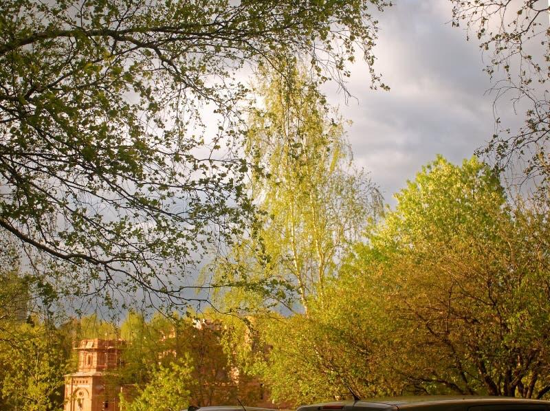 La iglesia ortodoxa inacabada entre los árboles fotos de archivo libres de regalías