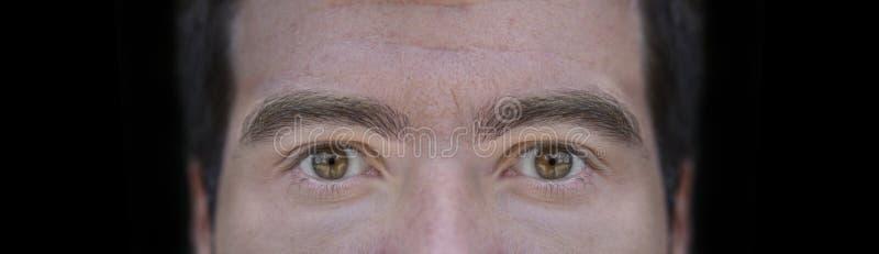 La imagen ascendente del cierre grande del marrón observa de hombre joven con el fondo negro imagenes de archivo