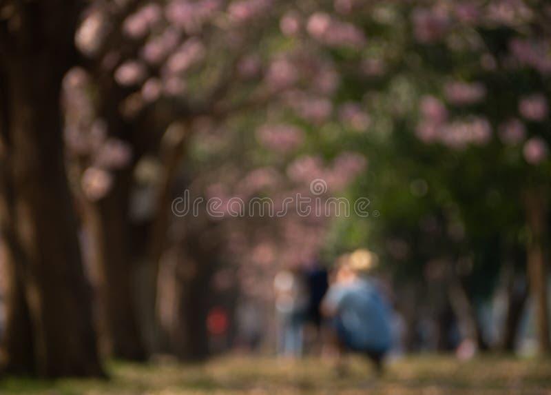 La imagen de falta de definición abstracta, borrosa el peaple toma una foto en el jardín con la sombra ligera abstracta, fondo bo imágenes de archivo libres de regalías