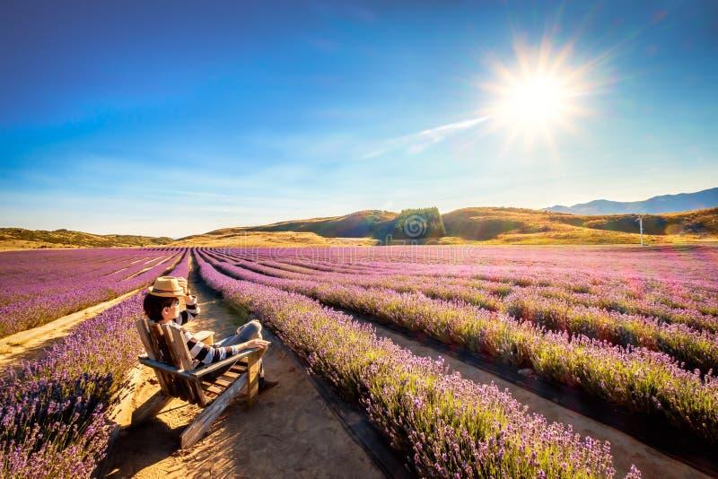 La imagen del paisaje de un turista joven se sienta y disfrutando de la sol en la granja de la lavanda foto de archivo