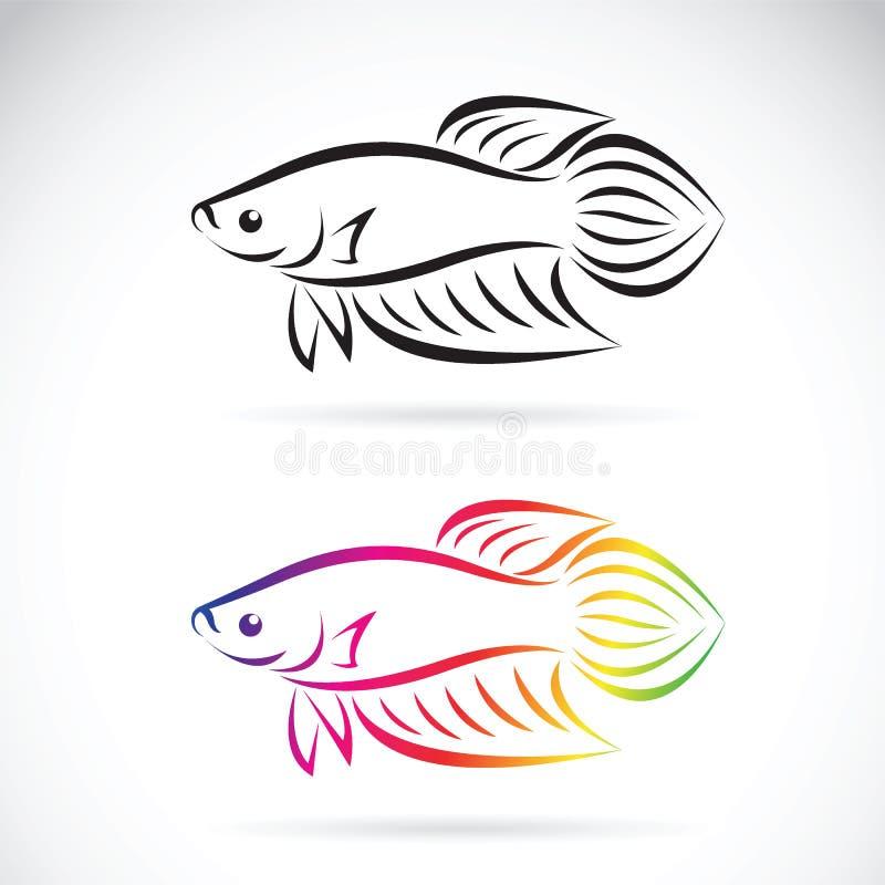 La imagen del vector de un pescado que lucha diseña en un fondo blanco stock de ilustración
