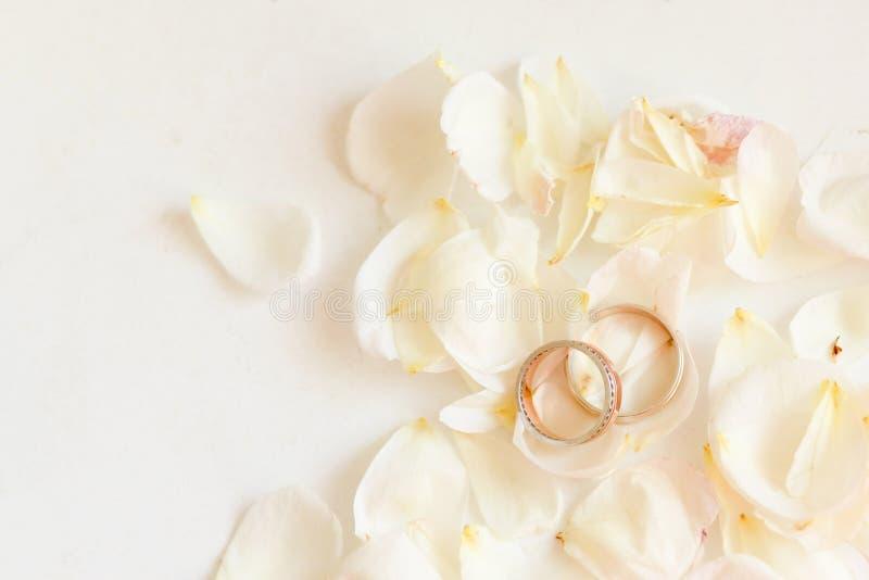 La imagen entonada hermosa con los anillos de bodas miente en blanco contra la perspectiva de las flores fotos de archivo libres de regalías