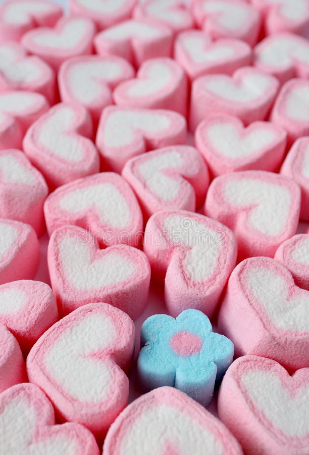 La imagen vertical de muchos en forma de corazón rosados y blancos en colores pastel con solamente una flor azul en colores paste foto de archivo libre de regalías