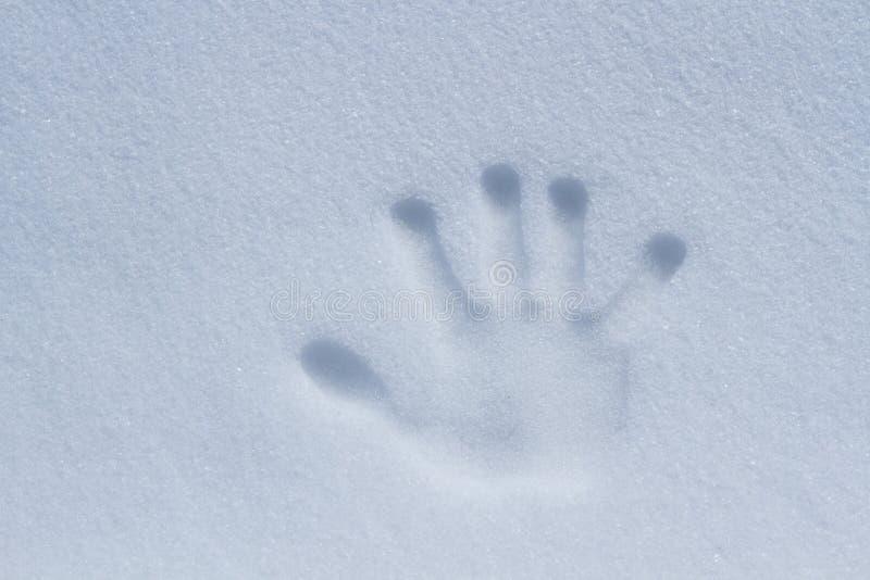 La impresión de una mano derecha en la nieve foto de archivo libre de regalías