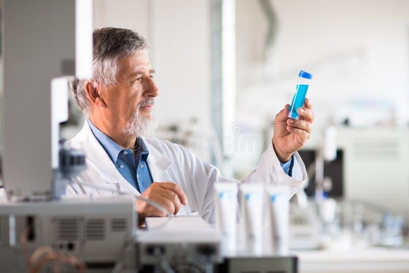La investigación de realización mayor del profesor/del doctor de la química experimenta imagen de archivo libre de regalías