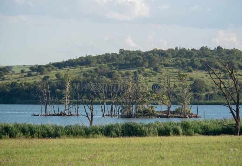 La isla en la presa de Rietvlei, Suráfrica fotos de archivo
